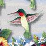 """Kolibri"""