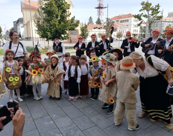 Зрењанин и Нови Сад